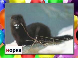 http://newsukraine.com.ua/news/221935-v-grecii-neizvestnye-vypustili-na-volyu