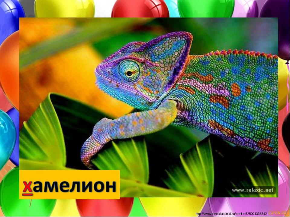 http://www.odnoklassniki.ru/profile/525001336542