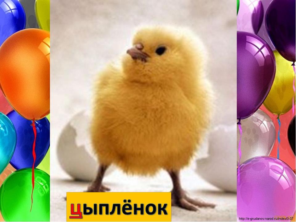 http://e-grudanov.narod.ru/index/0-37