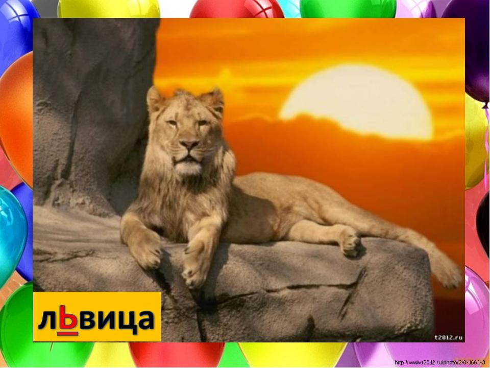 http://www.t2012.ru/photo/2-0-1661-3