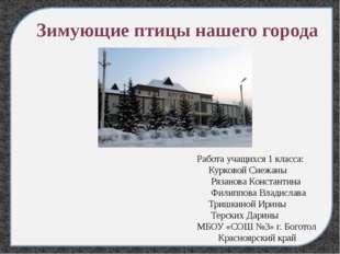 Работа учащихся 1 класса: Курковой Снежаны Рязанова Константина Филиппова Вл