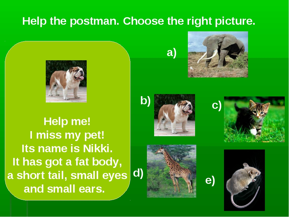 Help the postman. Choose the right picture. a) c) d) e) Help me! I miss my pe...