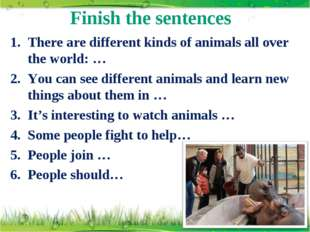 Finish the sentences There are different kinds of animals all over the world: