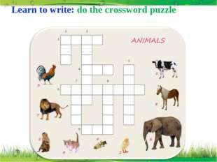Learn to write: do the crossword puzzle