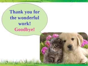 Thank you for the wonderful work! Goodbye!