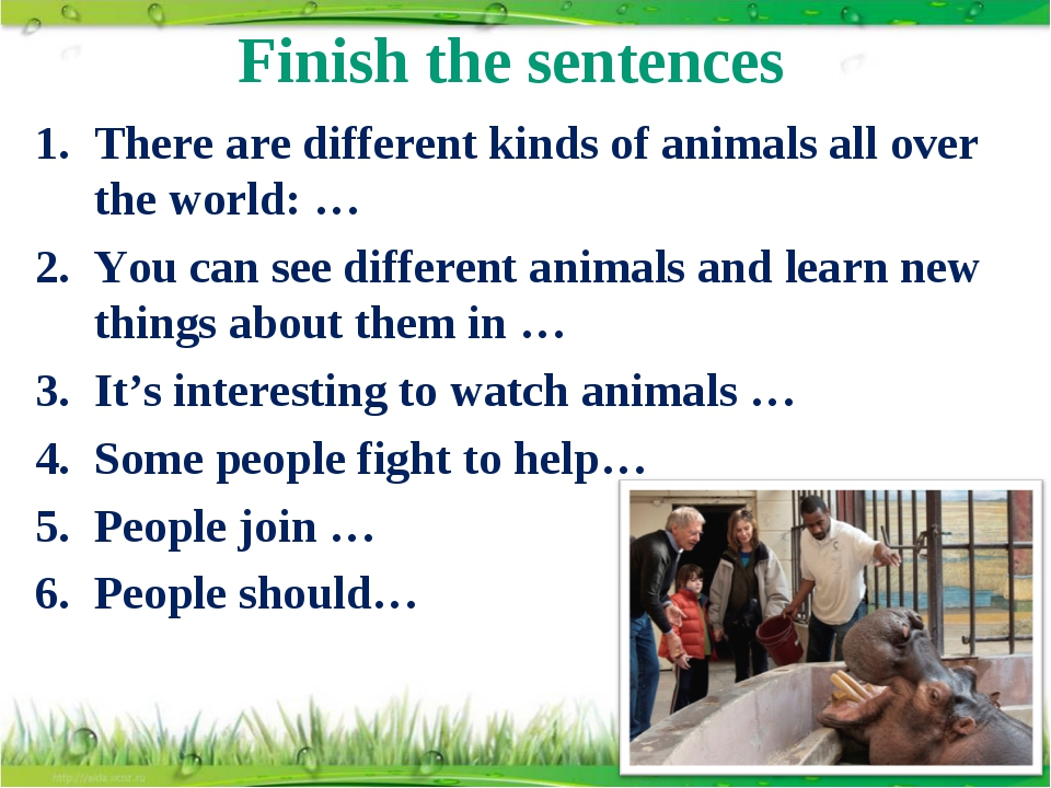 Finish the sentences There are different kinds of animals all over the world:...