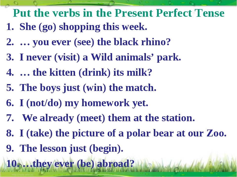 Put the verbs in the Present Perfect Tense She (go) shopping this week. … you...