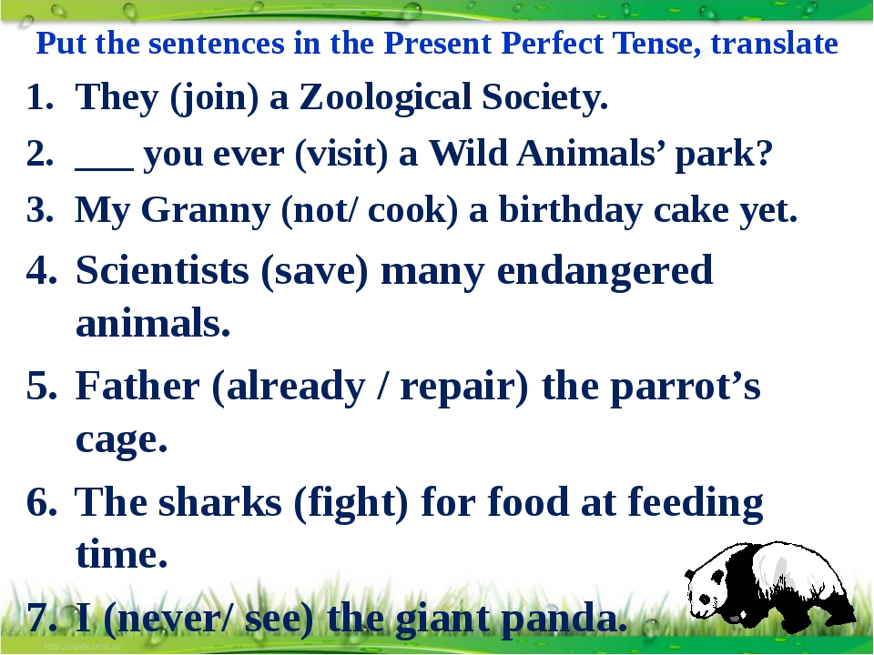Put the sentences in the Present Perfect Tense, translate They (join) a Zoolo...