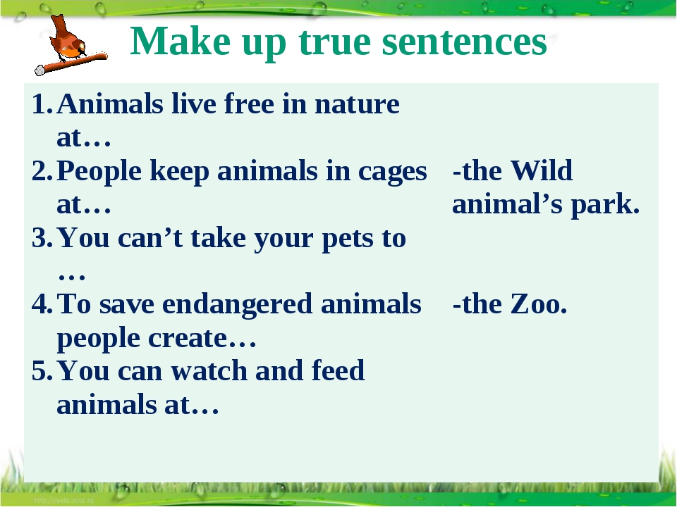 Make up true sentences Animals live free in nature at… People keep animals in...