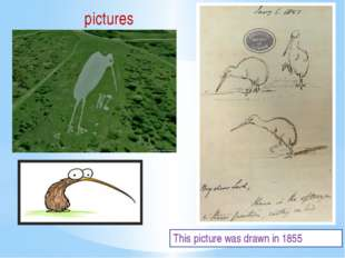 This picture was drawn in 1855 pictures