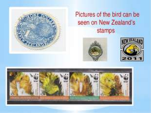 Pictures of the bird can be seen on New Zealand's stamps