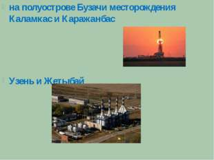 на полуострове Бузачи месторождения Каламкас и Каражанбас Узень и Жетыбай