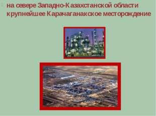 на севере Западно-Казахстанской области крупнейшее Карачаганакское месторожд