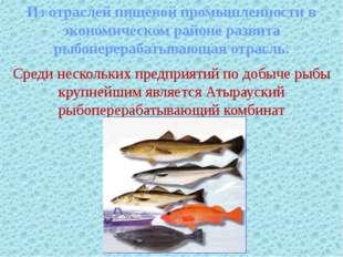 Из отраслей пищевой промышленности в экономическом районе развита рыбоперера