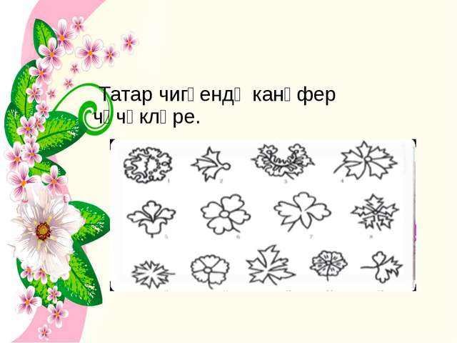 Татар чигүендә канәфер чәчәкләре.