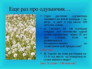 Еще раз про одуванчик… Одно растение одуванчика занимает на земле площадь 1 к