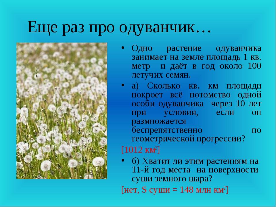 Еще раз про одуванчик… Одно растение одуванчика занимает на земле площадь 1 к...