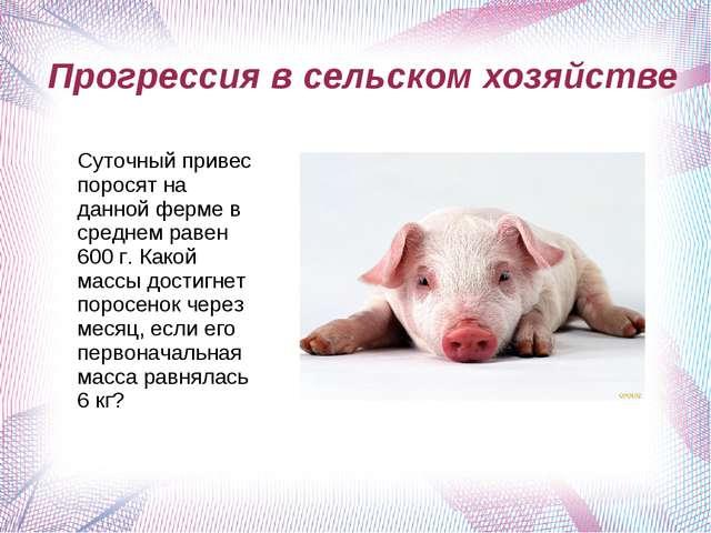 Прогрессия в сельском хозяйстве Суточный привес поросят на данной ферме в ср...