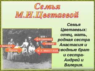 И.В.Цветаев Андрей М. А. Мейн с Асей Марина Валерия Семья Цветаевых: отец, ма