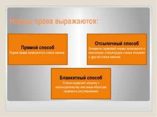 Нормы права выражаются: Прямой способ Норма права излагается в статье закона