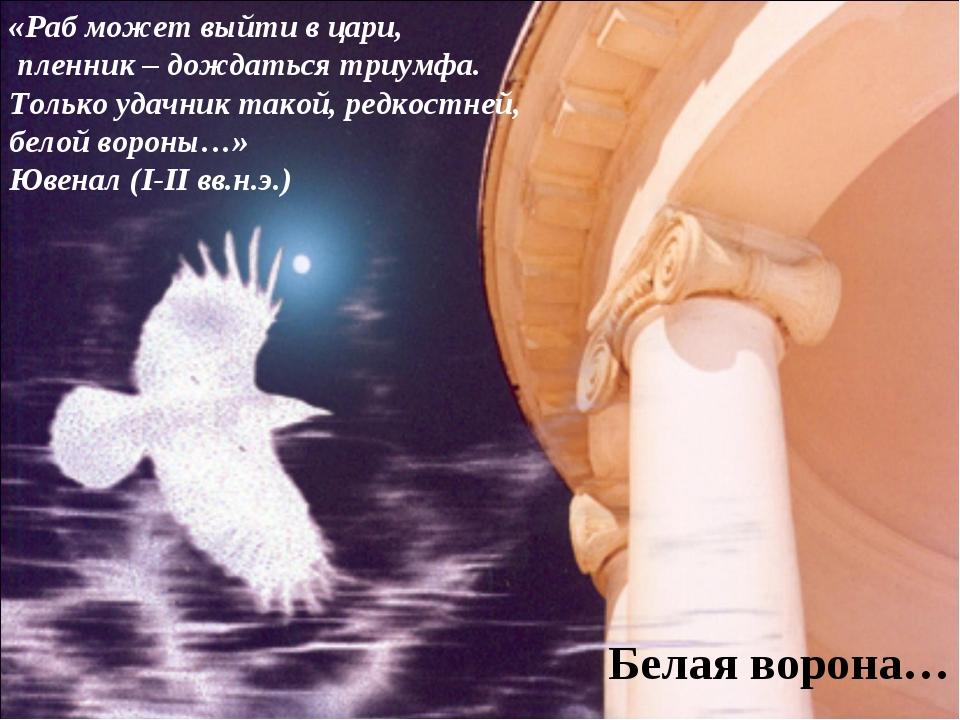 Белая ворона… «Раб может выйти в цари, пленник – дождаться триумфа. Только уд...