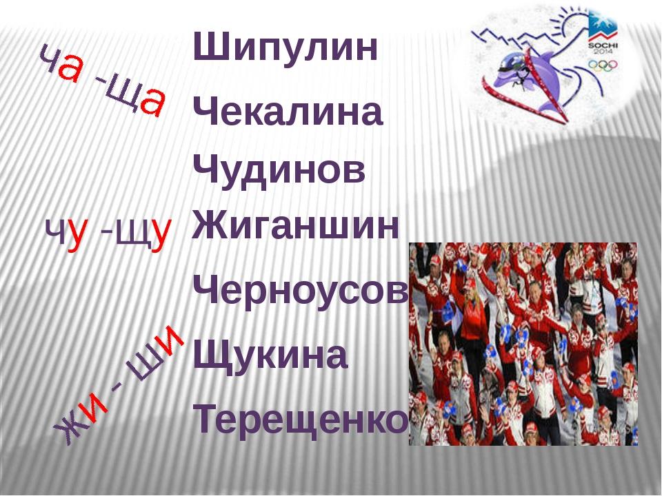 Шипулин Чекалина Чудинов Жиганшин Черноусов Щукина Терещенко