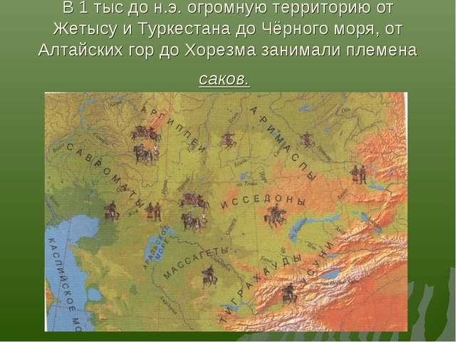 В 1 тыс до н.э. огромную территорию от Жетысу и Туркестана до Чёрного моря, о...
