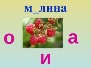м_лина о а и