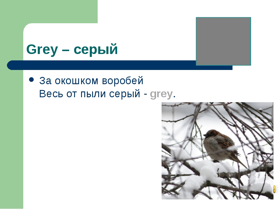 Grey – серый За окошком воробей Весь от пыли серый - grey.