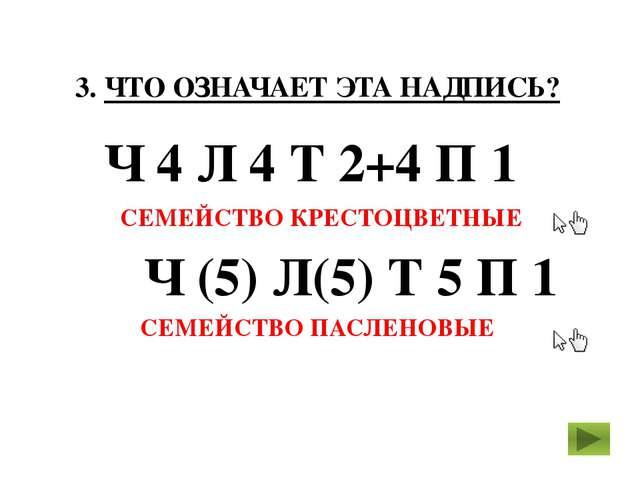 3. ЧТО ОЗНАЧАЕТ ЭТА НАДПИСЬ? Ч 4 Л 4 Т 2+4 П 1 СЕМЕЙСТВО КРЕСТОЦВЕТНЫЕ Ч (5)...