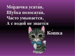 Мордочка усатая, Шубка полосатая, Часто умывается, А с водой не знается Кошка