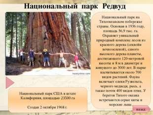 Интернет ресурсы: http://www.worlds.ru/photo/canada_280320101835_1.jpg - Ниаг