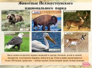 http://dic.academic.ru/pictures/enc_colier/ph03456.jpg - долина Смерти http:/