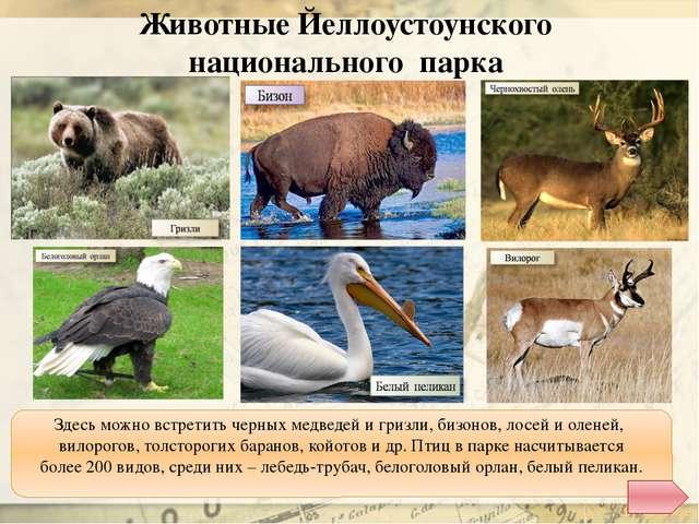 http://dic.academic.ru/pictures/enc_colier/ph03456.jpg - долина Смерти http:/...
