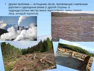 Другая проблема — истощение лесов, прилегающих к железным дорогам и судоходны