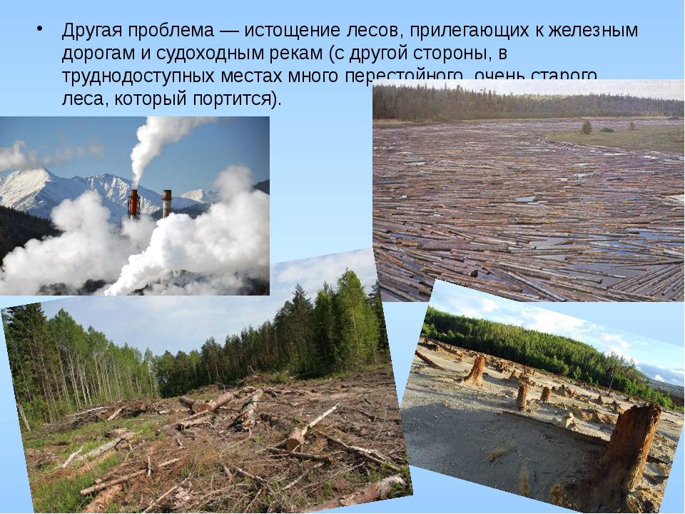 Другая проблема — истощение лесов, прилегающих к железным дорогам и судоходны...