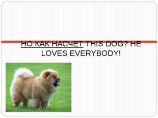 НО КАК НАСЧЕТ THIS DOG? HE LOVES EVERYBODY!
