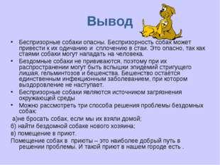 Вывод Беспризорные собаки опасны. Беспризорность собак может привести к их од