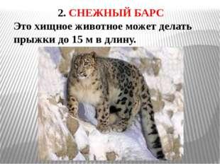 3. ДЖЕЙРАН Название этого животного в переводе с казахского языка обозначает