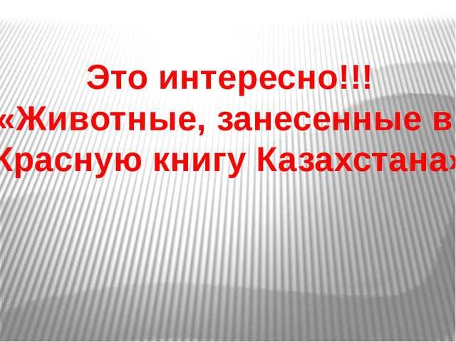 Это интересно!!! «Животные, занесенные в Красную книгу Казахстана»