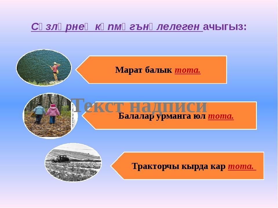 Сүзләрнең күпмәгънәлелеген ачыгыз: Текст надписи