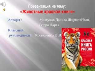 Презентация на тему: «Животные красной книги» Авторы : Мозгунов Данила,Ширшов