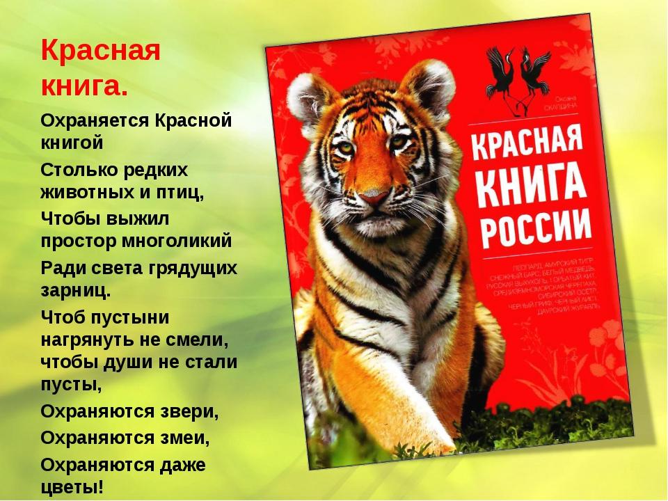 Красная книга. Охраняется Красной книгой Столько редких животных и птиц, Чтоб...