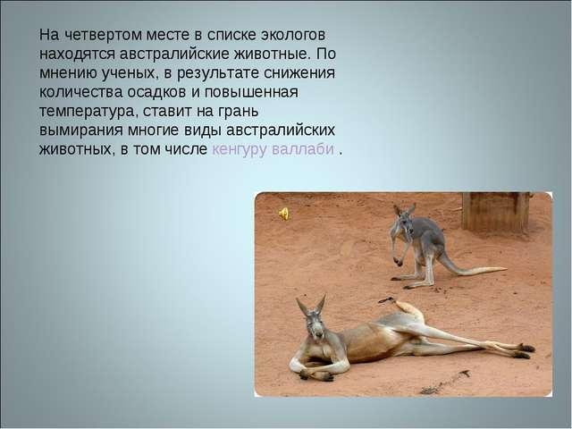 На четвертом месте в списке экологов находятся австралийские животные. По мне...