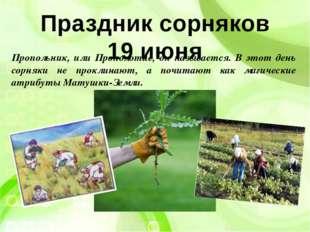 Праздник сорняков 19 июня Пропольник, или Прополотие, он называется. В этот д