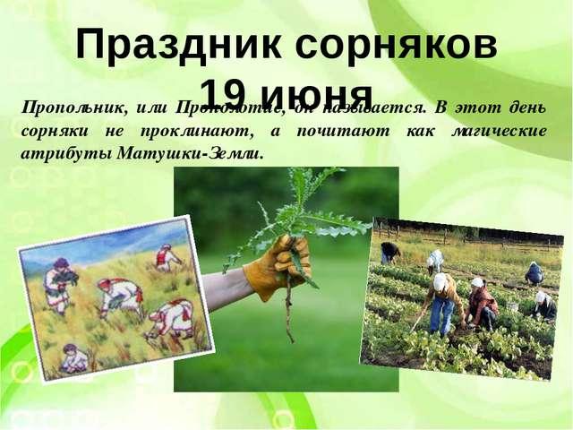 Праздник сорняков 19 июня Пропольник, или Прополотие, он называется. В этот д...