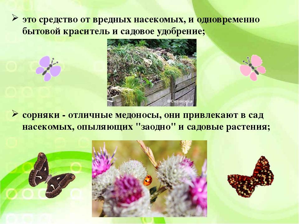 это средство от вредных насекомых, и одновременно бытовой краситель и садовое...