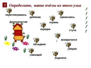 Определите, какие пчёлы из этого улья Деепричастия добежав убирая стуча прика