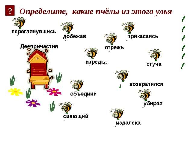 Определите, какие пчёлы из этого улья Деепричастия добежав убирая стуча прика...