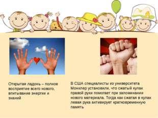 В США специалисты из университета Монклер установили, что сжатый кулак правой